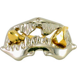 Cast Shark Hanayama Metal Puzzle