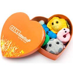 Heart Burned Mini Microbe Box