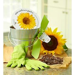 Children's Sunflower Garden Pail