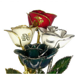 Armed Forces Rose