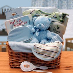 Simply Organic Baby Necessities Gift Basket in Blue