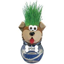Grow-a-Pet Dog Plant