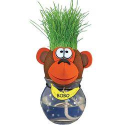 Grow-a-Pet Monkey Plant
