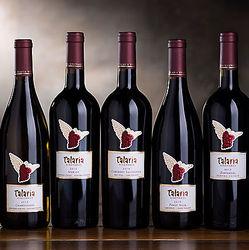 Best of Talaria Vineyards Wine Gift Box