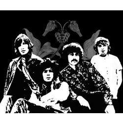 Pink Floyd Pop Art Limited Edition Print