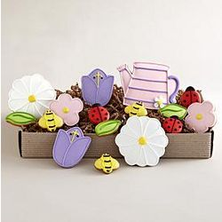 Springtime Cookie Variety Box