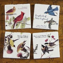 Songbirds of New England Coasters Set