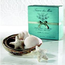 Sea Shell Soaps in Polished Abalone Shell