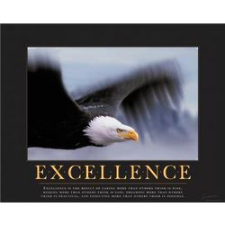 Excellence Eagle Framed Motivational Poster