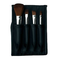 Travel-Friendly Mini Makeup Brush Kit