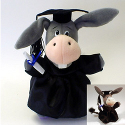 Graduate Donkey
