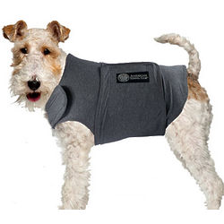 Dog's Anxiety Soothing Calmcoat