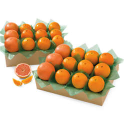 Key Biscayne All-Time Favorite Citrus Gift Box