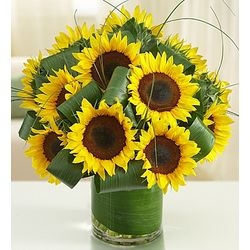 Sun-Sational Sunflower Bouquet
