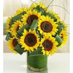Sun-Sational Sunflower Bouquet