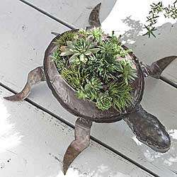 Patrick's Turtle Planter
