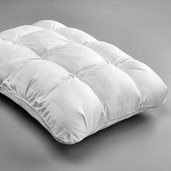 Chill Pillow with Memory Foam and Gel in Standard Size