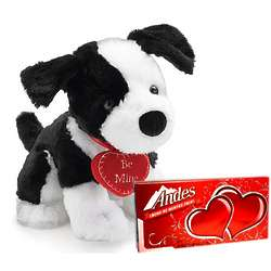 Be Mine Puppy Dog Plush with Thin Mints