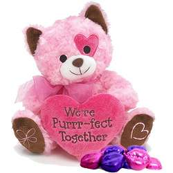 Purrr-fect Together Pink Plush Kitty with Chocolate Lips