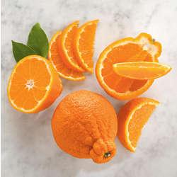Sumo Citrus Mandarins Gift Box