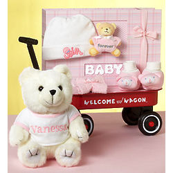 Hello Baby Girl! Welcome Wagon Gift Basket
