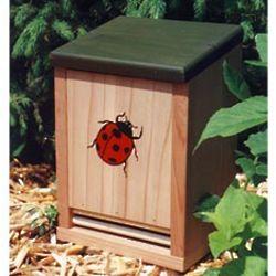 Ladybug Habitation