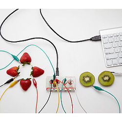 Makey Makey Computer Key Kit