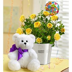 Happy Birthday Flowers and Teddy Bear Set