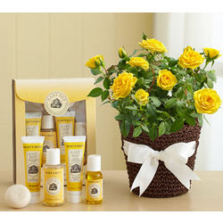 Burt's Bees Baby Bee and Yellow Roses Gift Set