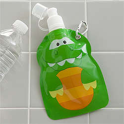 Reusable Dinosaur Drink Pouch
