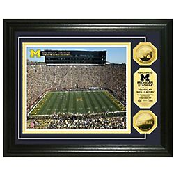 College Stadium Photo Collage And Gold Coins