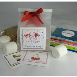 Mini Smores Favor Kit
