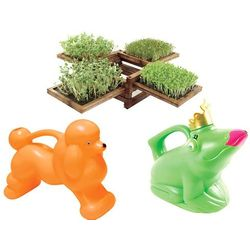 Miniature Garden & Watering Can Gift Set