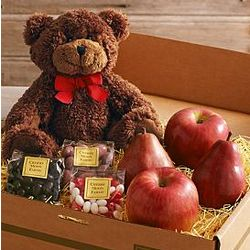 Beary Sweet Fruit and Chocolate Gift Box
