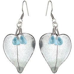 Aquamarine Briolette Earrings in Sterling Silver