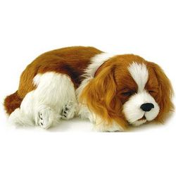 Life Like King Charles Spaniel Plush Sleeping Puppy
