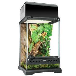 Nano Glass Terrarium Reptile Habitat