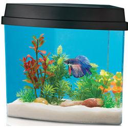 Alcove Aqua Oasis Aquarium