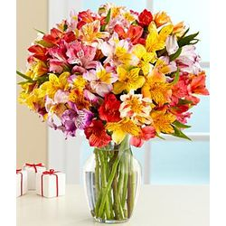 100 Blooms of Get Well Wishes Bouquet