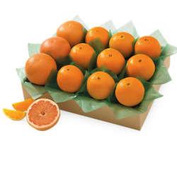 Large Key Biscayne Oranges