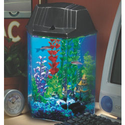 Aqua Scene 2 Desktop Aquarium Starter Kit