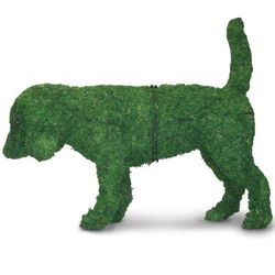 Small Dog Topiary