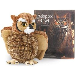 Adopted by an Owl Children's Book