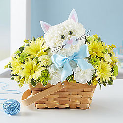 Fabulous Feline with Pink or Blue Ribbon Bouquet