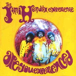 Jimi Hendrix Are You Experienced Vinyl Record