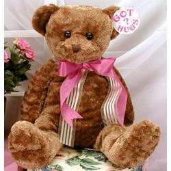 "Got Hugs 18"" Teddy Bear"