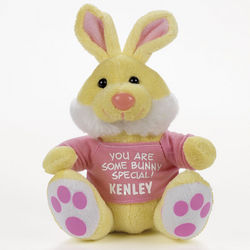 Plush Bunny Stuffed Animal with Personalized T-Shirt