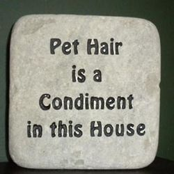 Pet Hair is a Condiment Decorative Rock