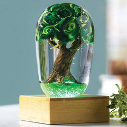 Paperweight LED Illuminated Base