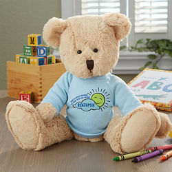 Get Well Personalized Baby Teddy Bear in Blue Shirt